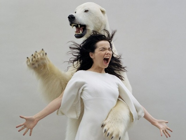 Björk (Mondino) - Hemisferio Boreal
