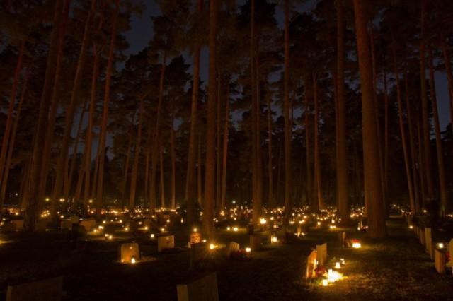 SkogskyrkogŒarden - Hemisferio Boreal