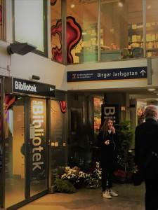 hemisferio-boreal-biblioteca-metro-ostermalmtorg